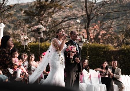 bruiloft ceremonie muziek